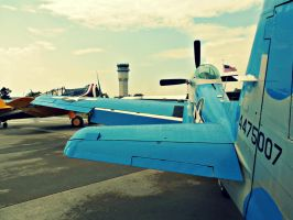 Paul's North American P-51 by NeverEndingAdventres