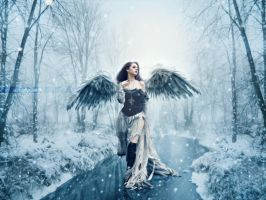 Winter Angel by DexterAdriano