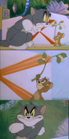 Tom and Jerry - Tsundere Tom is Tsundere by AANNIIMMAAKKSS