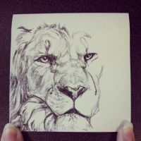 Post-it Lion by sevas-tra
