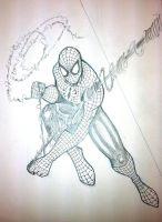 Spider-Man Commission from Sac-Con by thEbrEEze