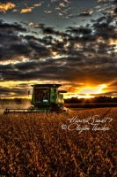 Harvest Sunset 7 by cthacker