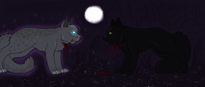 Welcome to Starclan (old) by The-Midnight-Owl