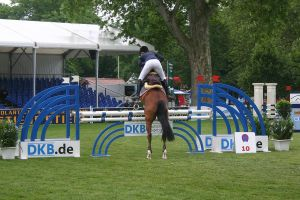 Show Jumping Stock 040 by LuDa-Stock