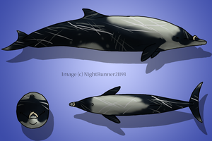 Strap-Toothed Whale by Morgan-Michele