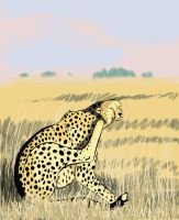 Lazy Cheetah by global-wolf