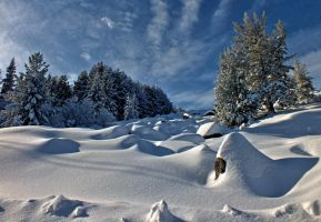 Snow relief by bugsbunny90