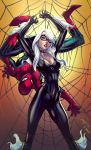 Spider Man And Black Cat by kcspaghetti