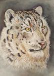 Snow Leopard by LonDiamond