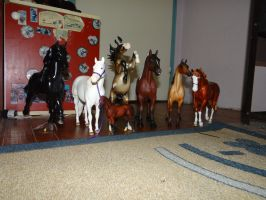 Model horse collection part....5 by Drakulka