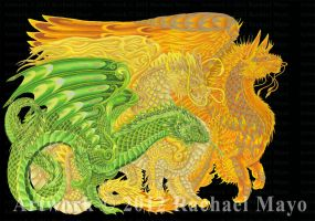 Dragons of Every Dawn YG, Y, YO by rachaelm5