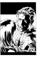 Spidey sample inks by madman1