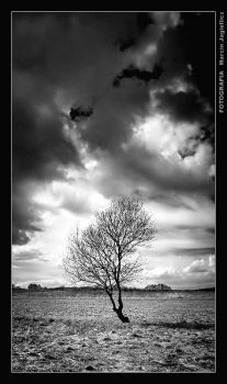 Between two worlds in bw by mjagiellicz
