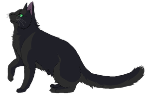 Hollyleaf by purrsians