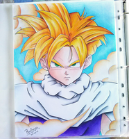 gohan by stylable