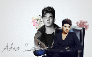 Wallpaper: Adam Lambert 1 by schaferlisting