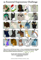 25 expression challenge by aThousandPaws