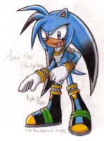 GIFT: Ares the Hedgehog by SailorMoonAndSonicX