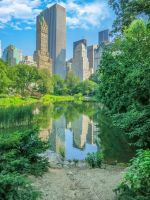 NYC + Central Park by bentolosa