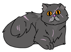 Yellowfang Ref by VampyKit