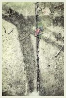 iPhoneography, Michigan Road Series 123014 by Gerald-Bostock