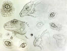 Eye/Scale Practice by SoulsplosionSketches