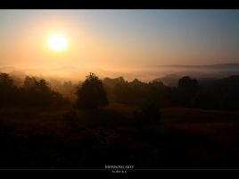 Morning Mist by FlorinBlaj