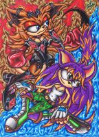 .:FanART Commission:. StarGazer And Aztec Kangaroo by AceOfSpeed94