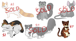 [OPEN] Cat Adopts by MiqotesosAdopts