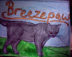 Breezepaw by panthereye24