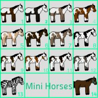 Mini Horses Adoption by Merel200Howrse