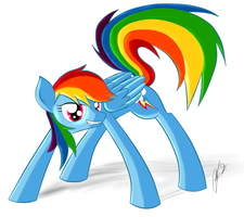 Rainbow Dash by Theorous