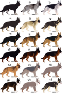 GSD Imports of All Kinds [AUCTION - OPEN] by Canidae--Mayhem