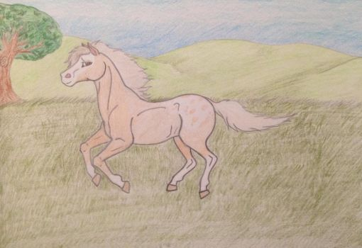 AT with GypsyLycan: Palimo Appaloosa  by DragonGirl75