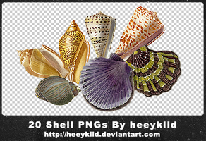 20 Shell PNGs By heeykiid by heeykiid
