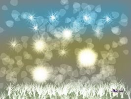 lights above the grass by maineboni