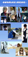 End of Year Cosplay Meme 2012 by Ineedaname9