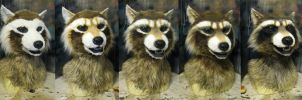 Airbrushing a raccoon by Crystumes