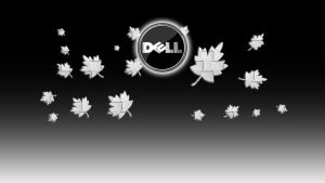 dell logon by coolcat21