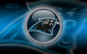 Carolina Panthers 2010 by EaglezRock