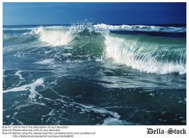 Ponce Inlet Waves by Della-Stock