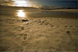 The Golden Path by SnapperRod