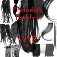 Photoshop Hair Brushes - set 2 by firebug-stock