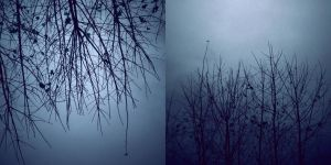 winters.web by sarah-marley
