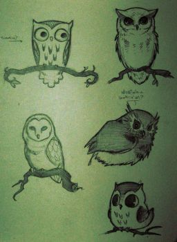 Five Owls by RedxDog