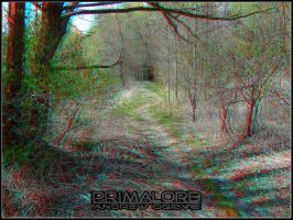 3D Bike Path by PrimalOrB