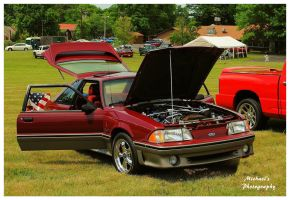 A 5.0 Mustang by TheMan268