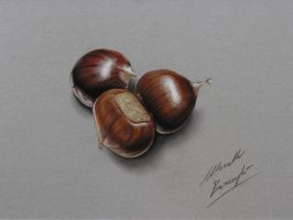 Chestnuts DRAWING by Marcello Barenghi by marcellobarenghi