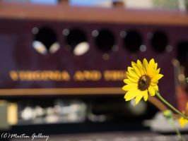 Nevada Train Museum140705-44 by MartinGollery