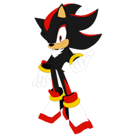 Sonic Equestria Vector - Shadow the Hedgehog by cooleevee759